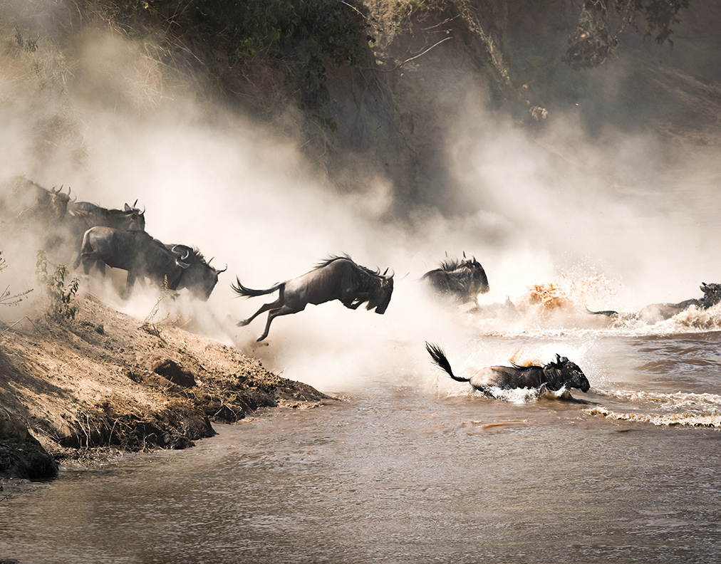 The Great Migration, East Africa