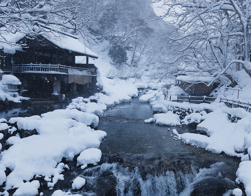 Skiing, snow monkeys, and hot springs in Japan